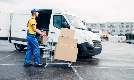 stina transport logistic courier